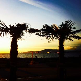 kits beach palms