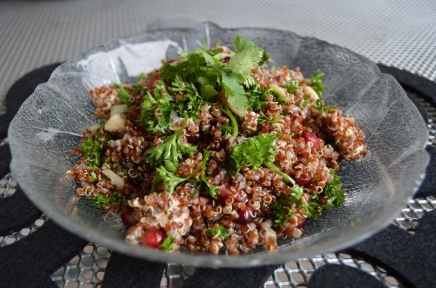 quinoa 024